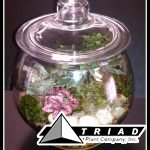 cookie-jar-terrarium