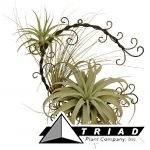 metal-xerographica-wreath